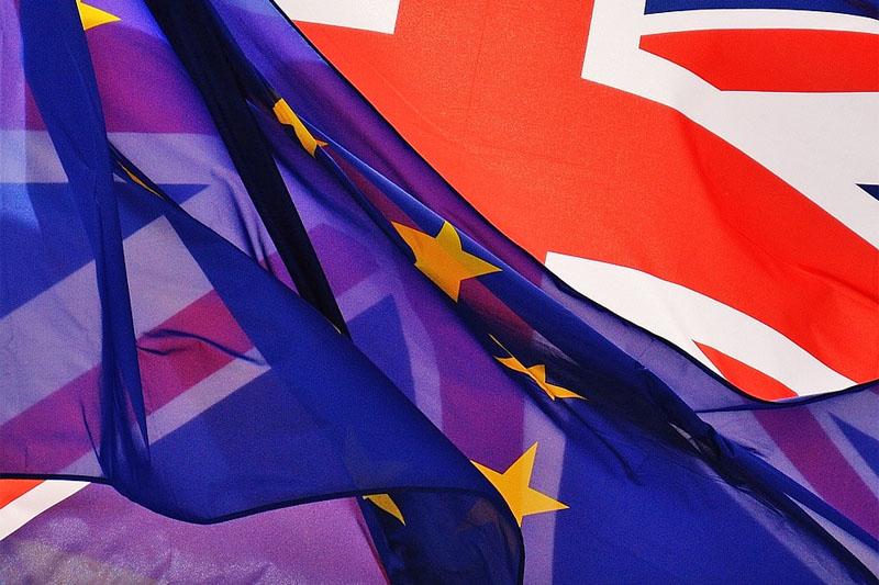 DBV: Brexit hat negative Folgen für Deutschland