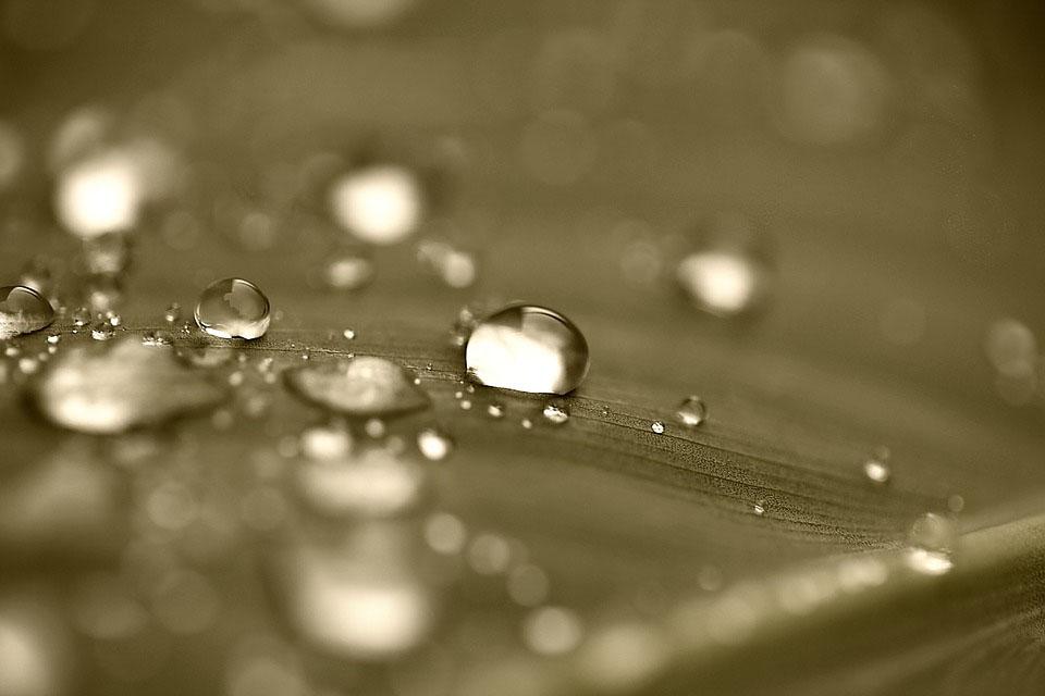 Wasservernebelung: Können Asthmatiker aufatmen?