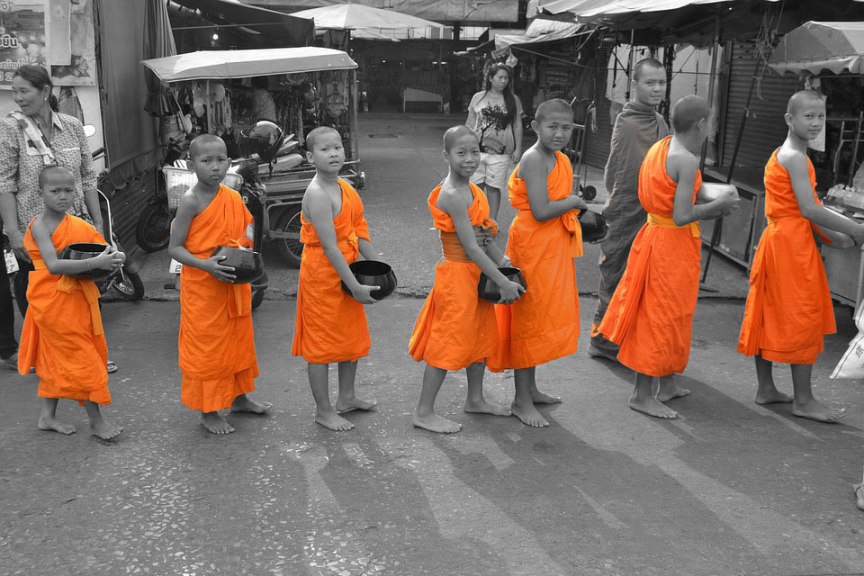 Buddha Bowl: alles Gute aus der Schüssel