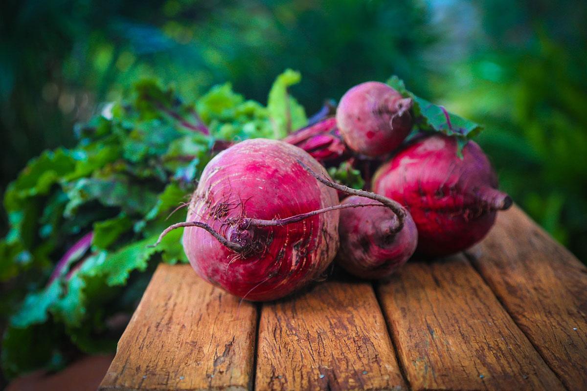 Rote Bete: Ihr «Superfood» für Herbst und Winter