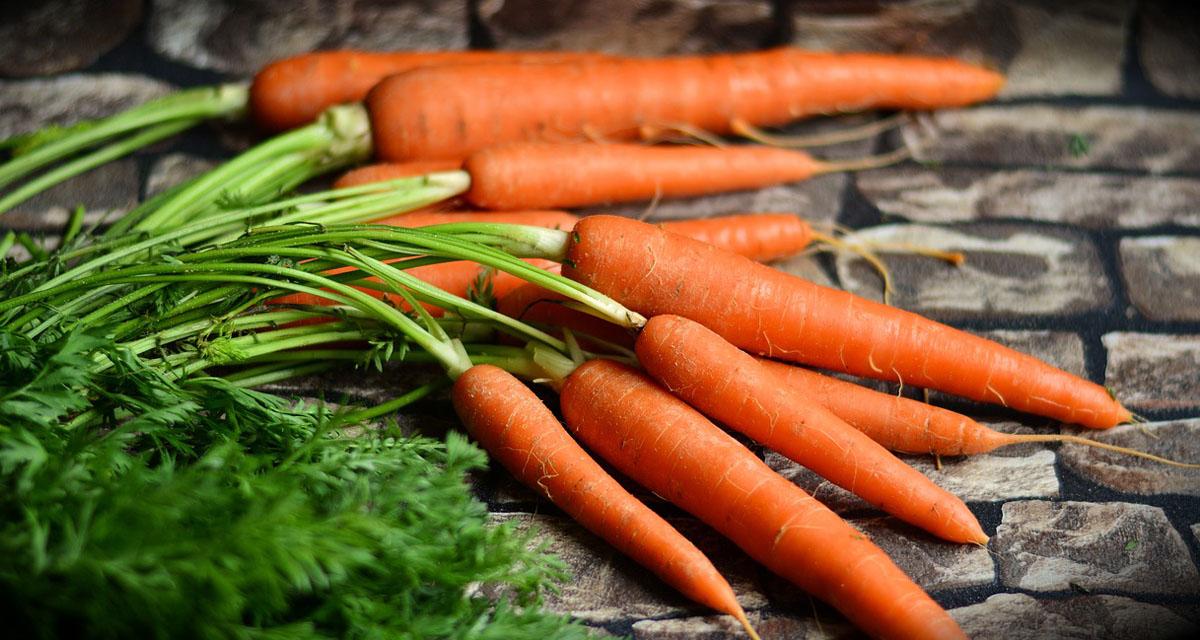 Mehr Gemüse, weniger Milch, optimierte Resteverwertung